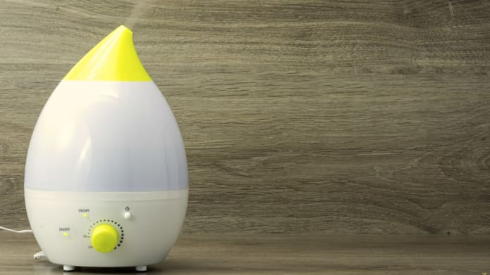 Why everyone should buy a humidifier for their home (CVS